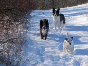 The girls enjoying the snow.